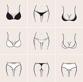 image of panties  - Sexy bra and panties - JPG