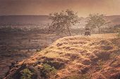 image of rickshaw  - Old rickshaws travelling on a winding mountain road near Aurangabad in Rajasthan - JPG