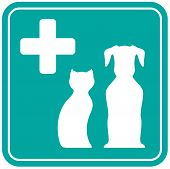 pic of blue animal  - blue veterinary icon with white animal silhouette - JPG