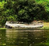 picture of shipwreck  - Shipwreck located somewhere in the amazon river - JPG