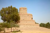 picture of oasis  - Famous Jahili fort in Al Ain oasis - JPG