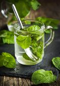 stock photo of mints  - Mint Tea in glass cup and fresh mint leaves - JPG