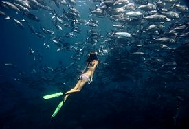 foto of school fish  - Young lady diving by the school of Jack fish on the single breath - JPG