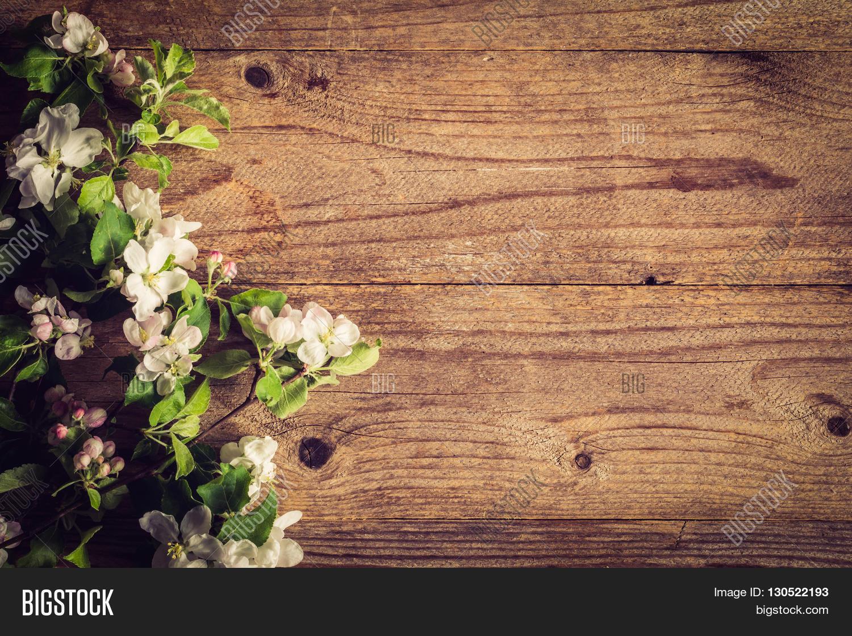 Spring Post Card Background Image Amp Photo Bigstock