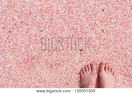 Woman feet on pink sand beach at Barbuda island in Caribbean made of tiny pink shells, close up photo
