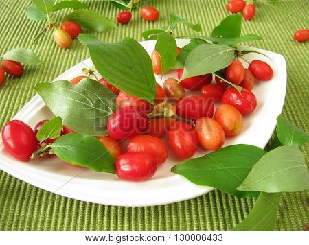 Fresh fruits of cornel with leafes on plate