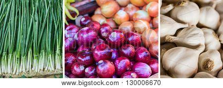 Fresh Vegetable Onion Collage