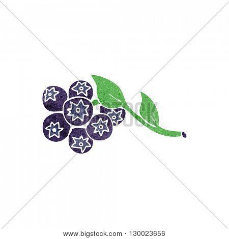 freehand retro cartoon blueberries