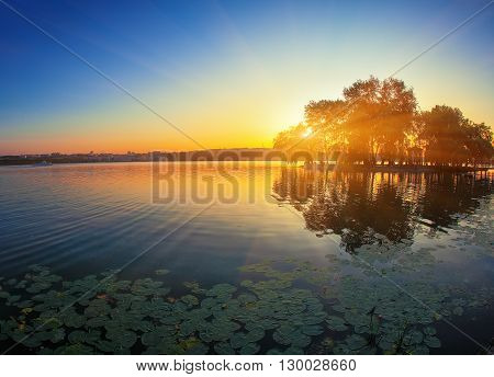 beautiful sunset at the lake. Waterlily at foreground. Island on the