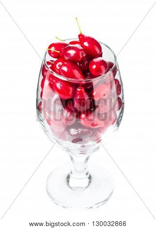Riped dogwood berries in wine glass. Isolated on a white background.