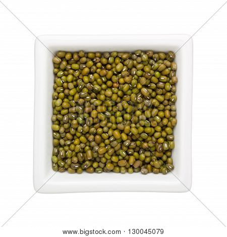 Mung beans in a square bowl isolated on white background