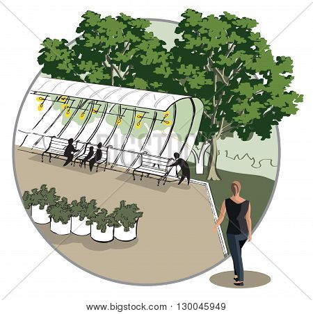 sketch of a relaxation area with a gazebo and benches in a circle
