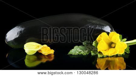 Closeup Shot Zucchini With Flower On Black Background
