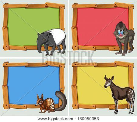 Wooden frames in four colors illustration