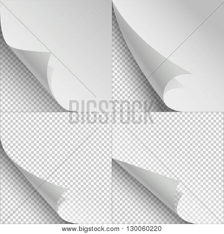 Blank sheets of paper with page curl and shadows. Sheet paper with corner curl, blank paper bent set. Vector illustration