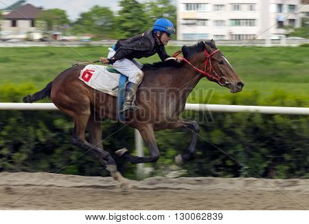 Horse race for the traditional prize Probni in Nalchik,Caucasus,Russia.