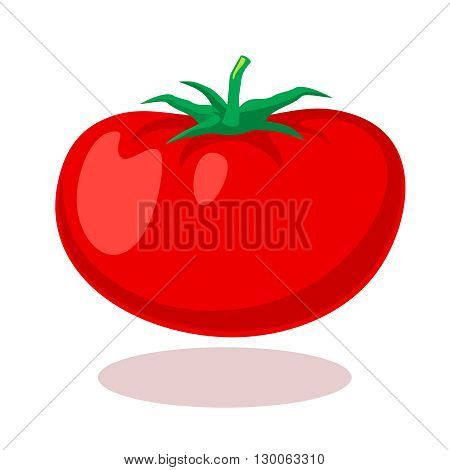 Tomato in cartoon style. Vegetable tomato, food tomato, healthy food tomato illustration