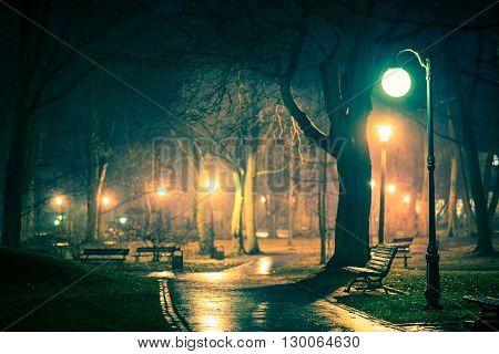 Dark Rainy City Park. Night Time Rain Shower in the Illuminated Park.