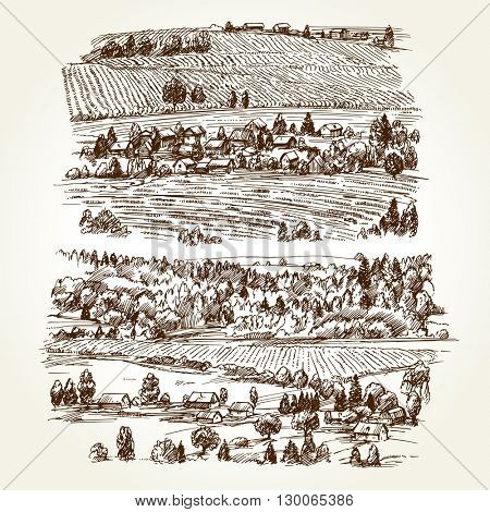 Vineyard. Agricultural landscape. Hand drawn collection.