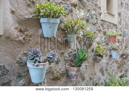 rustic, flowerpots street in the tourist island of Mallorca, Valdemosa city in Spain