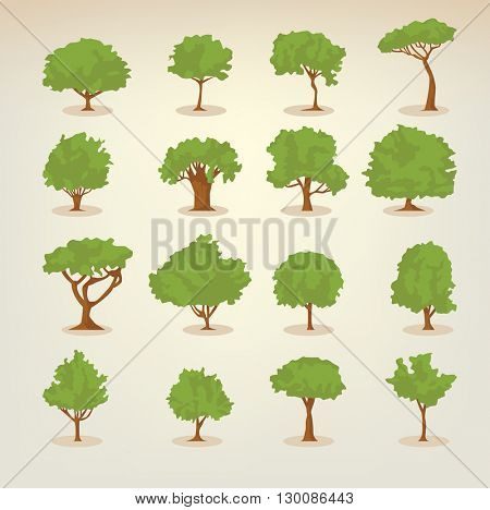 Collection of different kinds of deciduous trees illustrations in flat, simple style