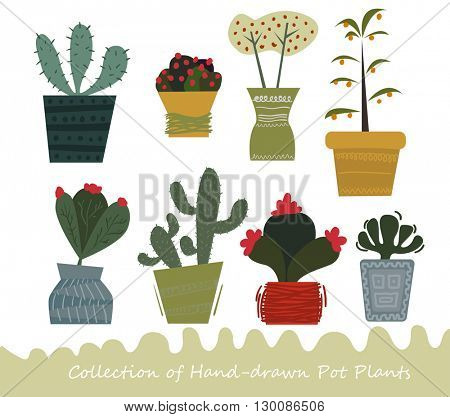Collection of hand-drawn potted flowers and cactus