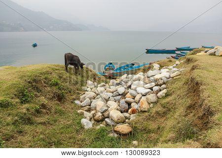 Phewa lake in cloudy weather, Pokhara, Nepal