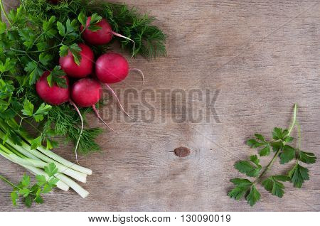 Fresh bundle of red radish with green leaves of dill and parsley on a wooden background