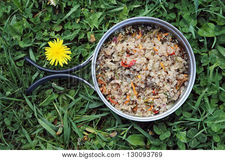 buckwheat porridge with meat and vegetables on the grass