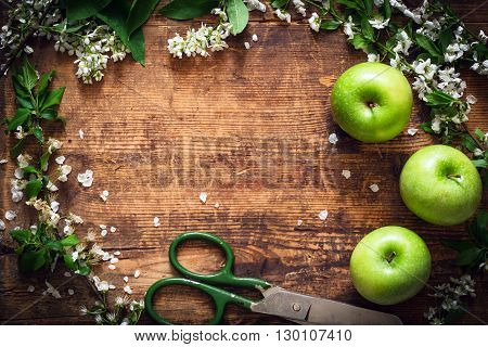 Summer gardening background. Frame of apple blossoms, green apples and scissors on rustic wooden backdrop with copy space for text. Post card template