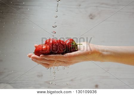 Woman's hand holds fresh strawberries on light wood background. Adult young woman washes a strawberries. Fresh red strawberries in splash of water. Fresh strawberries under running tap with water drops.