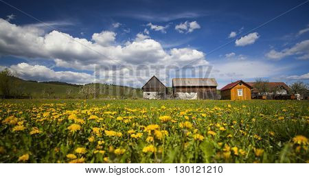 Picturesque panoramic countryside landscape