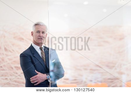 portrait of handsome senior business man at modern office meeting room interior