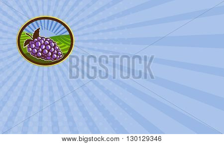 Business card showing illustration of a bunch of grapes set inside oval shape with farm vineyard and sunburst in the background done in retro woodcut style.