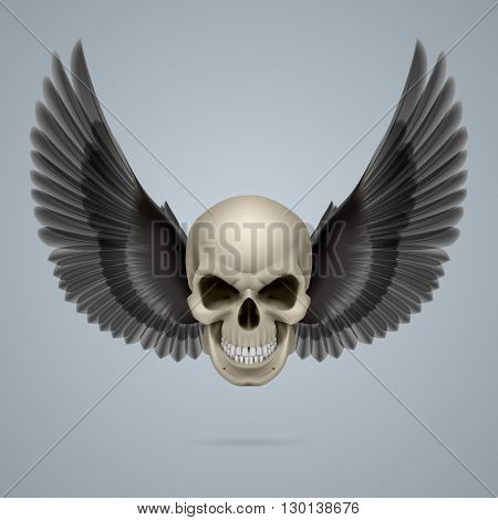 Evil looking ivory coloured skull with two wings.