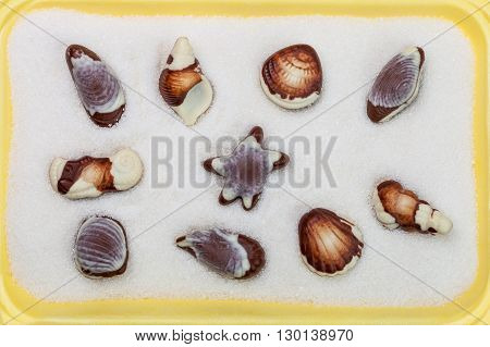 Chocolate candies in the form of seashells against the backdrop of granulated sugar summer background