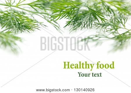 Sprigs of green dill on a white background. Frame with copy space for text. Isolated studio close-up