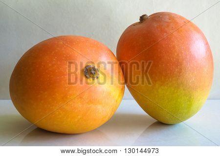 Two ripe orange mangoes on a plain background.