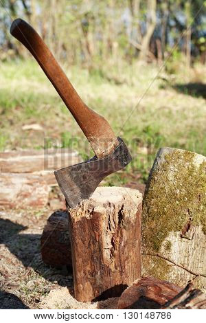 Firewood Splitting. Stack of logs with axe on green clearing in forest