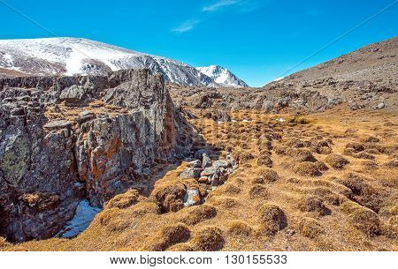 Snowy mountains with large rocks with yellow bog hummocks in foreground Russia Siberia Altai mountains