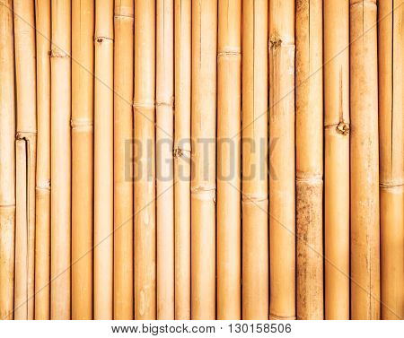 Yellow bamboo fence wall texture background, vertical