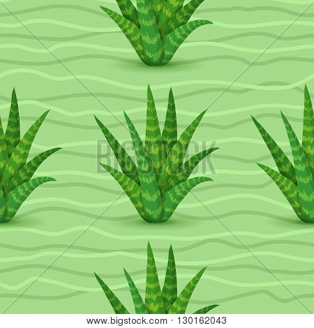 Succulents seamless pattern. Vector illustration with succulents green wave light green background