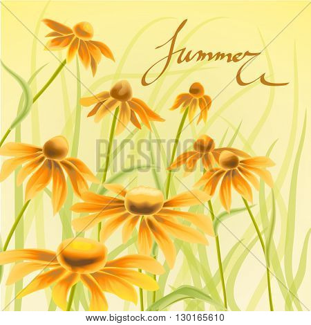 Orange and yellow flowers with green leaves and floral elements on the yellow background. Watercolor with wild Echinacea flowers. Hand drawn lettering.