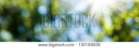 image of natural abstract background close up