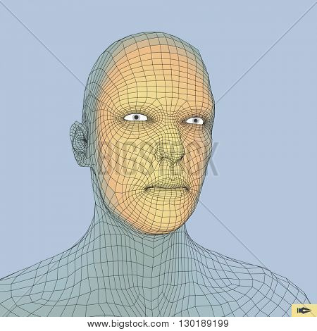 Head of the Person from a 3d Grid. Human Head Wire Model.