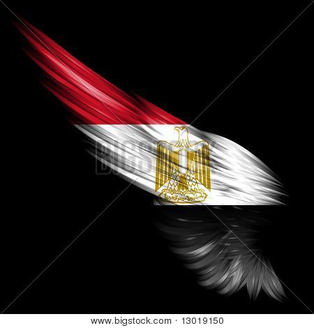 Abstract Wing With Egypt Flag On Black Background