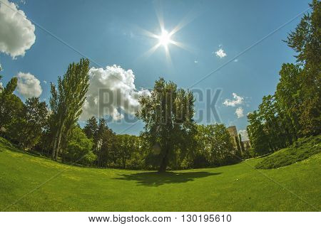 Amazing landscape fish eye view in the park.