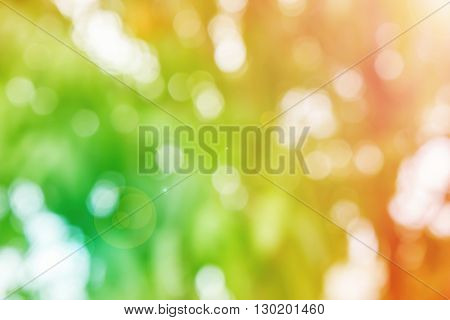 Fresh Summer Colour Orange And Green Tone  Bokeh And Sunlight Abstract Background
