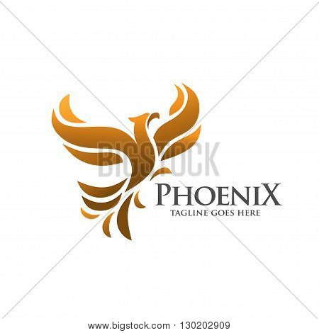 elegant phoenix. hawk concept. fire bird. legend. fly bird. concept