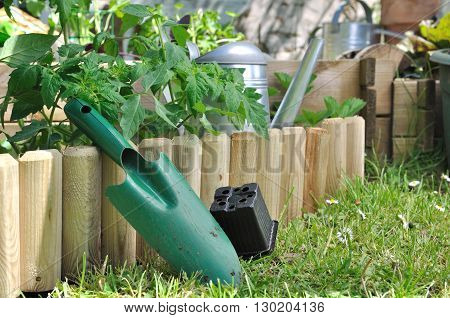 shovel with empty bucket against wooden border of a vegetable patch
